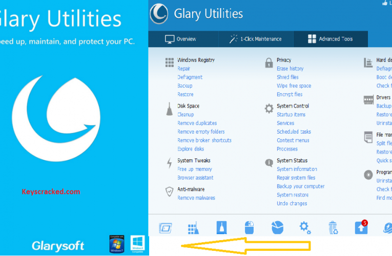 Glary Utilities Pro 5.164.0.190 Crack With Torrent [2021] License Key