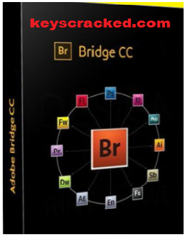Adobe Bridge CC 2021 11.0.0.83 Crack Plus Key Download [Latest]