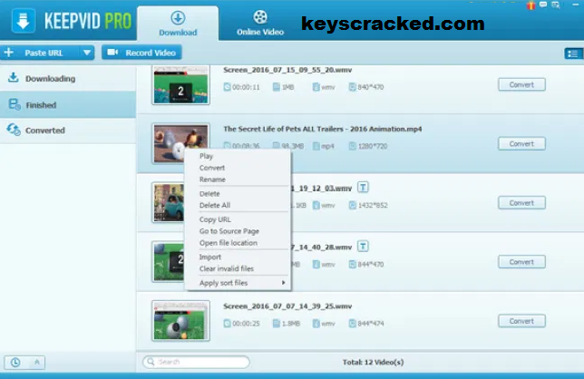 KeepVid Pro Key